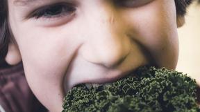 Kost, sundhed og hygiejne